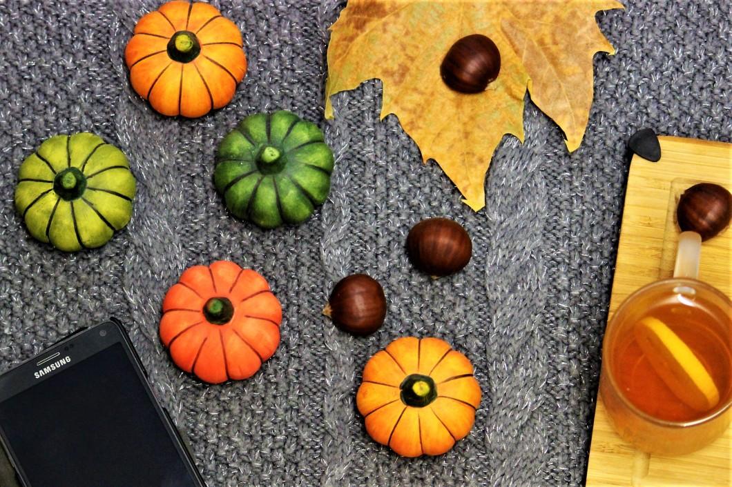 Herbst_9159